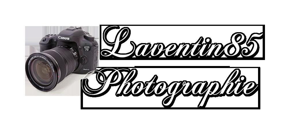 galerie laventin85